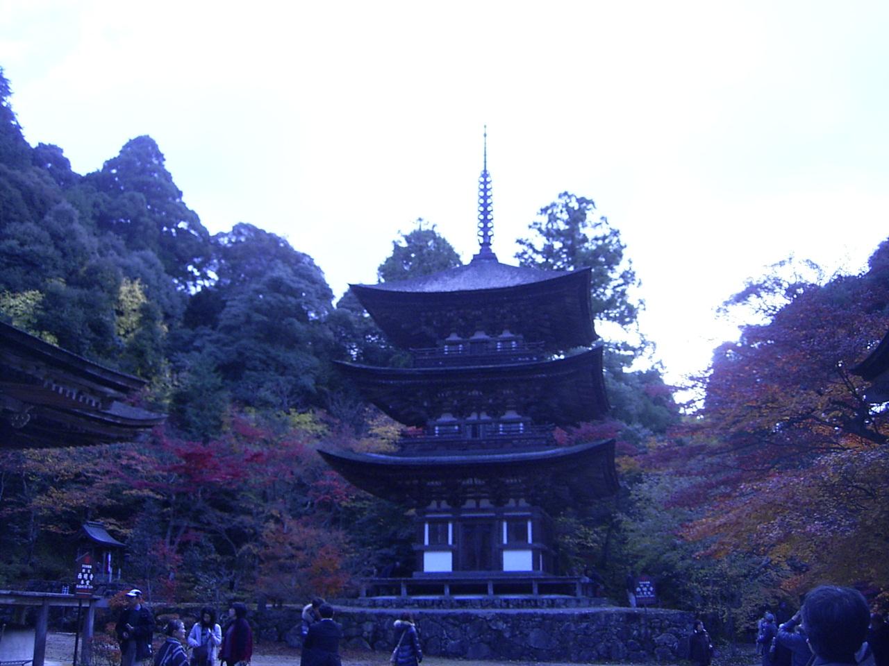 Hikone_099