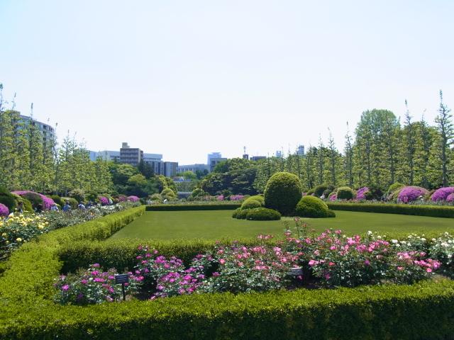 Shinjukugyoen_044